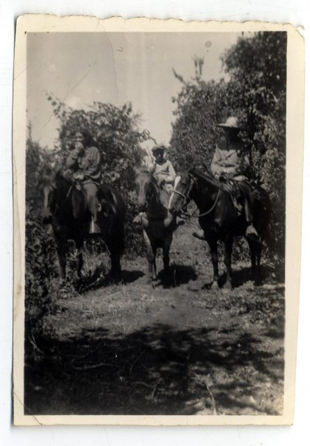 Personas sobre caballos