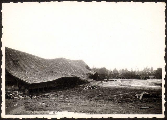Bodega N.2