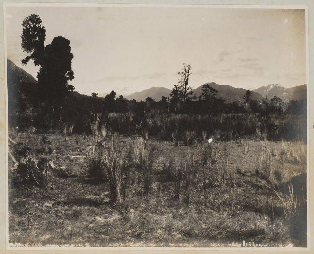 Valle Reñihue