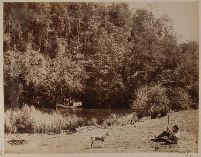 Río Futa