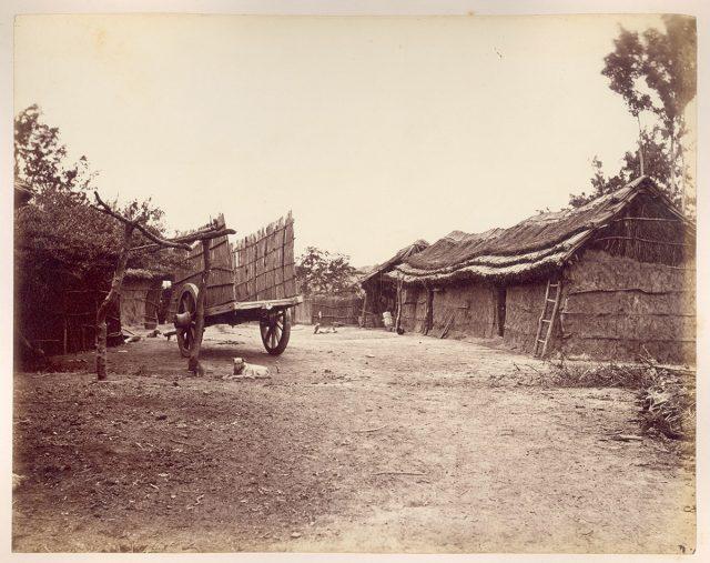 Conjunto de casas en el campo