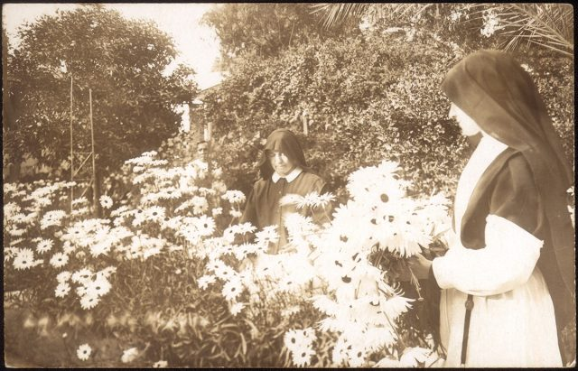 Monjas cogiendo flores.