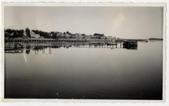 Puente sobre el río Bueno