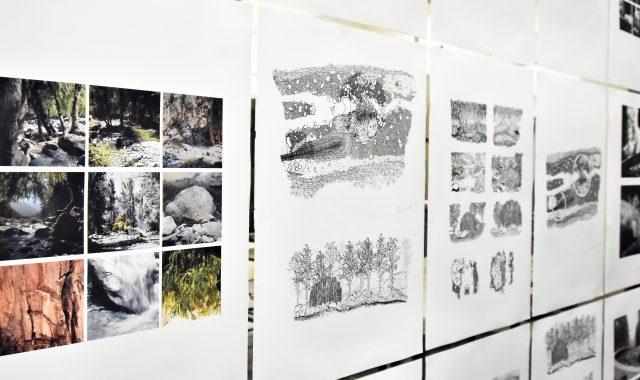 Muestra Abierta 'Un punto de observación desde el paisaje' TVP2020