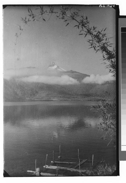Vista de lago