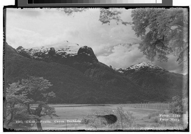 Chile – Peulla. Cerro Techado