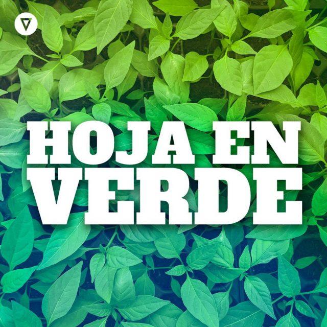 Hoja en Verde. Capítulo 1: Constitución y Derecho Ambiental